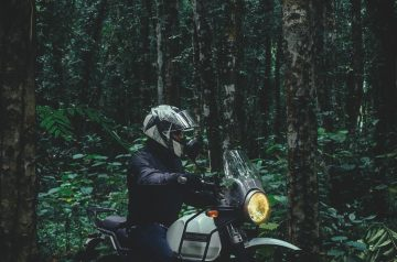 bike-dirtbiker-forest-himalayan-1435509